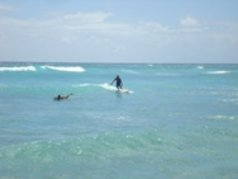 Barbados Surfer s Point 4
